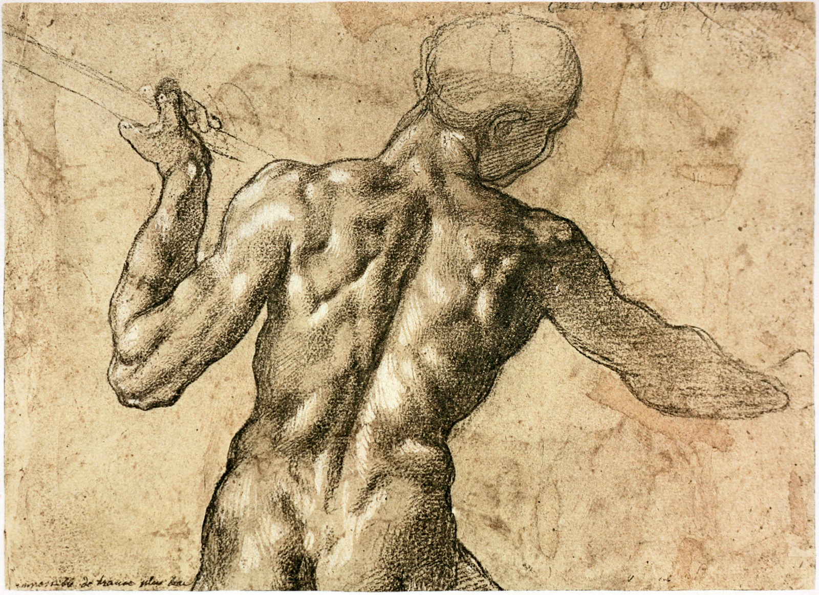 8-michelangelo-drawing