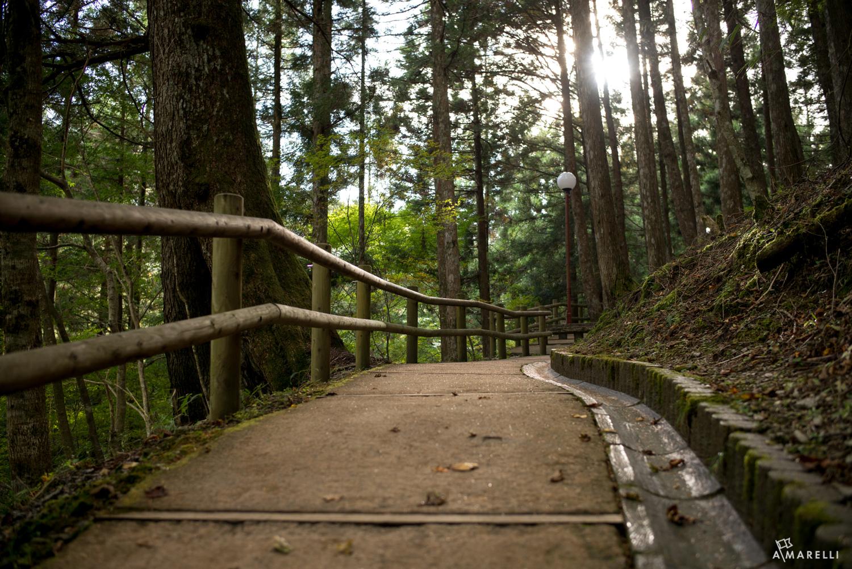 Iya Valley Tokushima Adam Marelli-4