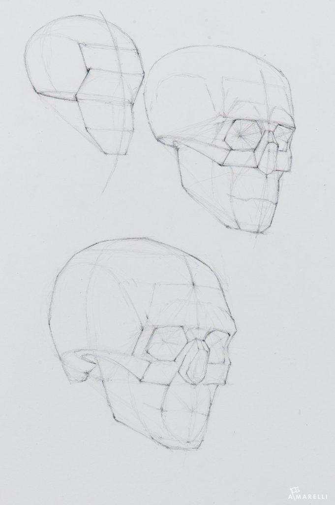 5-daily-skull-stetch-by-adam-marelli