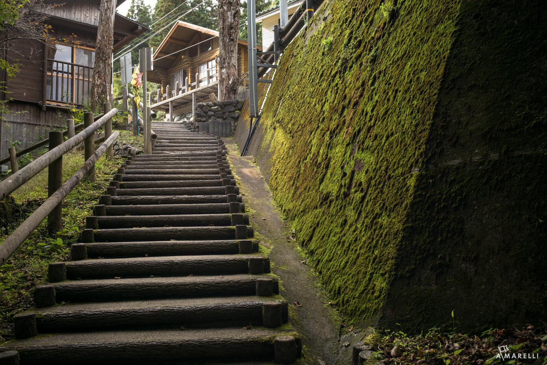 Iya Valley Tokushima Adam Marelli-3